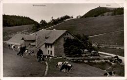Wirtschaft Z. Sennhaus - Vorder Weissenstein (6) - SO Solothurn