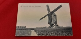 Baesrode Termonde Moulin Moolen Van M Van Belle - Dendermonde