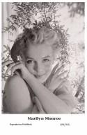 MARILYN MONROE - Film Star Pin Up PHOTO POSTCARD- Publisher Swiftsure 2000 (201/315) - Artistas