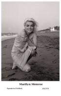 MARILYN MONROE - Film Star Pin Up - Swiftsure PHOTO  Postcard 2000 201/370 - Artistas