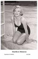 MARILYN MONROE - Film Star Pin Up PHOTO POSTCARD- Publisher Swiftsure 2000 (201/301) - Artistas