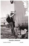 MARILYN MONROE - Film Star Pin Up PHOTO POSTCARD- Publisher Swiftsure 2000 (201/288) - Artistas