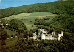 Flugaufnahme Dornach - Restaurant Schlosshof (8157) - SO Soleure