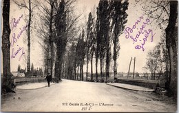 41 ONZAIN - L'avenue, Perspective - - France