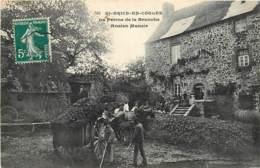 35 , ST BRICE EN COGLES , Ferme De La Branche , Ancien Manoir , * 429 20 - France