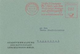 AFS Leichlingen Rhein Obstmarkt Obst Kirmes Bürgermeister Apfel Birne 1953 - [7] République Fédérale