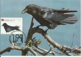 Carte Maximum - Oiseaux - Portugal - Corvo - Grand Corbeau - Common Raven - Corvus Corax - Other