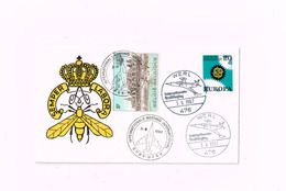 Werl,Internationaler Flugtag.BPS 6,FBA/BSD.Timbres Belge Et Allemand. - Covers & Documents