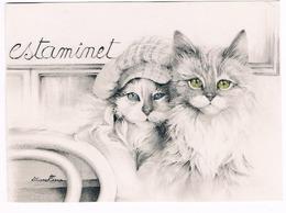 2 Chats- Kittens -katzen -  Poesjes - Katten