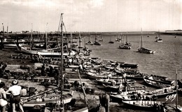 L'AIGUILLON SUR MER - Le Port, Arrivée Des Boucholeurs (1956) - Other Municipalities