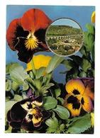 """Bedarieux- Carte Parfumée-Fragonard;""""Vallazur""""-Grasse-fleurs, Pensée--(D.2480) - Bedarieux"""