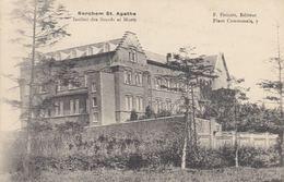 BERCHEM-SAINTE-AGATHE. Environ 115 Cartes Postales De L - Belgio