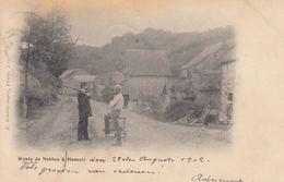 HAMOIR (54), Tohogne... Ensemble 68 Cartes Postales, ép - Belgio