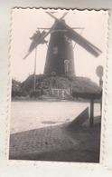 Windmolen In Cadzand - Foto 5.5 X 9 Cm - Photos