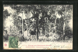 AK Angkor-Thom, Ruines De Pimean-Acas - Non Classés