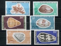 RC 13389 AFARS ET ISSAS N° 422 / 427 COQUILLAGES SERIE COMPLÈTE NEUF ** - Afars Et Issas (1967-1977)