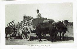 PAKISTAN-KARACHI-BULLOCK CART-ATTELAGE DE BOEUFS-roue - Pakistan