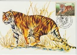 Nations Unies New York Carte Maximum 1999 Tigre 803 - New York - Hoofdkwartier Van De VN