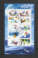 F 76  OBL Y & T  Les Sports De Glisse   27/53 - Bloc De Notas & Hojas