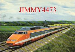 CPM - TGV - Record Du Monde Le 26 Février 1981 - Photo SNCF CAV  Patrick Olivain - ABEILLE-CARTES Edit. LYNA  PARIS - Treinen