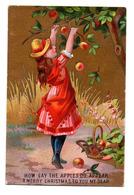 RARE Chromo Victorian Trade Card Dorée Carte Voeux Fête Noël Jeune Fille Récolte Pomme Fruit Arbre Corbeille Panier - Chromos