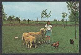 92550/ ENFANTS, Petits Amis, Fillette Nourrissant Des Moutons Et Des Poules - Scene & Paesaggi