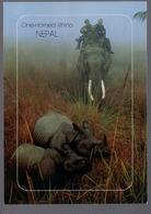 REF 402 : CPM NEPAL Elephant Rhinocéros - Elephants
