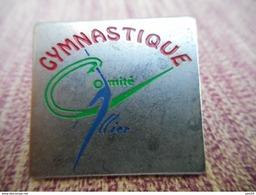 A009 -- Pin's Gymastique Comite Allier - Gymnastique