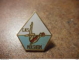 A024 -- Pin's CNS Molsheim -- Exclusif Sur Delcampe - Natation