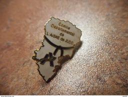 A029 -- Pin's Comite Departemental De L'Aisne De Judo - Judo
