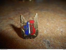 A037 -- Pin's 2RHG -- Dernier Vendu 03/2012 !! - Militaria