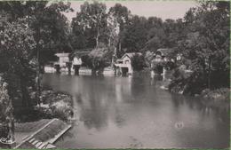 CPSM OLIVET Bord Du Loiret Années 50 - Autres Communes