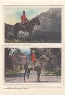 CANADA ROYAL CANADIAN MOUNTED POLICE Laporello Mit 15 Ansichtskarten Gel.194? - Kanada