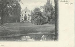 MARIAKERKE : Les Cygnes - Cachet De La Poste 1964 - Gent