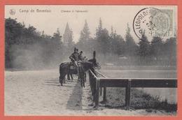 CAMP De  BEVERLOO -  LEOPOLDSBURG  - 1912  -  Paarden / CHEVAUX à L'abreuvoir. - Leopoldsburg (Beverloo Camp)