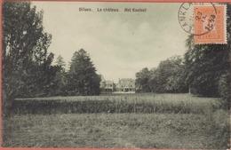 DILSEN:  Het KASTEEL - Le CHATEAU 1913  - Impr. Smeets Frères Mechelen S/ Meuse - Bree