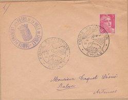 ENVELOPPE TIMBRE     1959 FOIRE EXPO (CHOLET) - Marcophilie (Lettres)