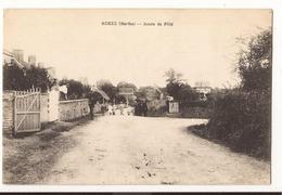 Sarthe Roezé Route De Fillé - France