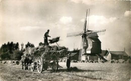 WORMHOUT MOULIN DESCHODT - Wormhout