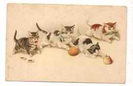 Illustrateur  CHATONS JOUANT- Animal Fantaisie Chat - Katzen