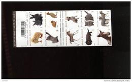 Belgie 2010 Carnet Boekje B112 Pets Dog Chicken Cat Duck Fowl Horse Lamb Sous Faciale Onder Postprijs !!!  MNH - Postzegelboekjes 1953-....
