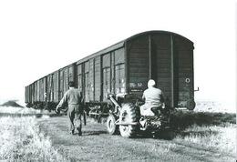 91 Photo BRETIGNY SUR ORGE Transport Des Grainier De CLAUSE Par Train - Bretigny Sur Orge