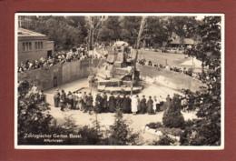 BASEL - Zoologischer Garten - Affenfelsen - BS Basel-Stadt