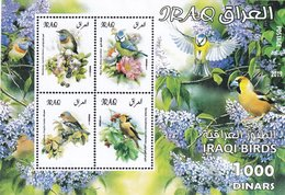 Iraq New Issuie 2019,Birds Souvenr Sheet MNH ,issued Only 1.000 - Rare -topical Issue - Iraq