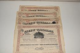 5 Actions 20 Florins Nieuw Tjisalak Société De Cultures La Haye 1910 - Agriculture