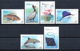 Cuba 1994 / Birds Fishes MNH Aves Peces Poisson Oiseaux Vögel Fische / Cu14031  C5-25 - Pájaros