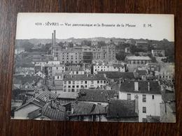 L22/484  Sèvres - Vue Panoramique Et La Brasserie De La Meuse - Sevres