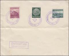 Blanko-Umschlag Mit Bug Die Freie Sudentendeutsche Stadt Freiwald (Oktober 1938) - Sudetenland