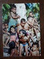 L22/496 Micronésie . Iles Ellicée. Une Grappe De Petits Elliciens - Micronesia