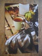 CPM Autumn Tea, Thé D'automne - Fotografie